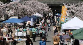 2018年3月31日(土)に開催された「寺集 (てらつど)@鎌倉光明寺」のフォトギャラリーをアップいたしました。